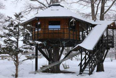 【北海道十勝】鹿追町三部牧場|樹屋體驗